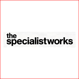 THEspecilaist-work